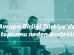 'AB Türkiye'de sivil toplumu neden destekliyor?'