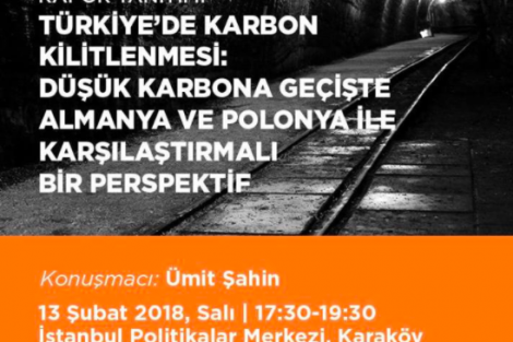 Rapor Tanıtımı: Türkiye'de Karbon Kilitlenmesi