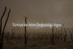 """Araştırma: """"Türkiye'nin 4'te 3'ü İklimden Endişeli, Büyük Çoğunluğun İlk Tercihi İse Güneş Enerjisi"""""""