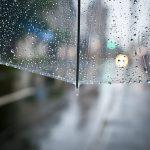 Hava ve iklim riskleri şirketlerin yüzde 88'inin kârlılığını tehdit ediyor