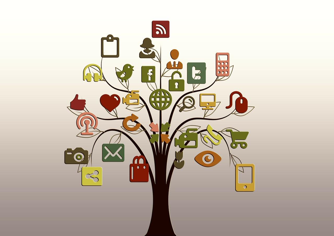 STK'lar İçin Ücretsiz Dijital Medya Kullanımı Atölyesi