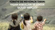 Türkiye'de Mevsimlik Tarım: Yaşam Koşulları ve Çocuk İşçiliği Gerçeği kitabı yayınlandı!