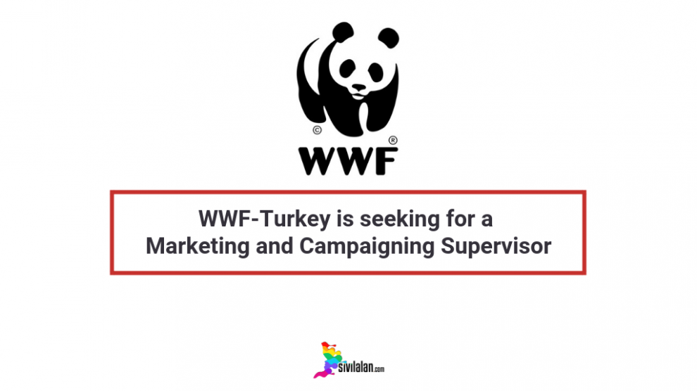 WWF-Turkey is seeking for a Marketing and Campaigning Supervisor
