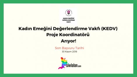 Kadın Emeğini Değerlendirme Vakfı (KEDV) Proje Koordinatörü Arıyor!