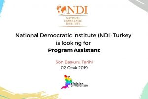 National Democratic Institute (NDI) Turkey is looking for Program Assistant