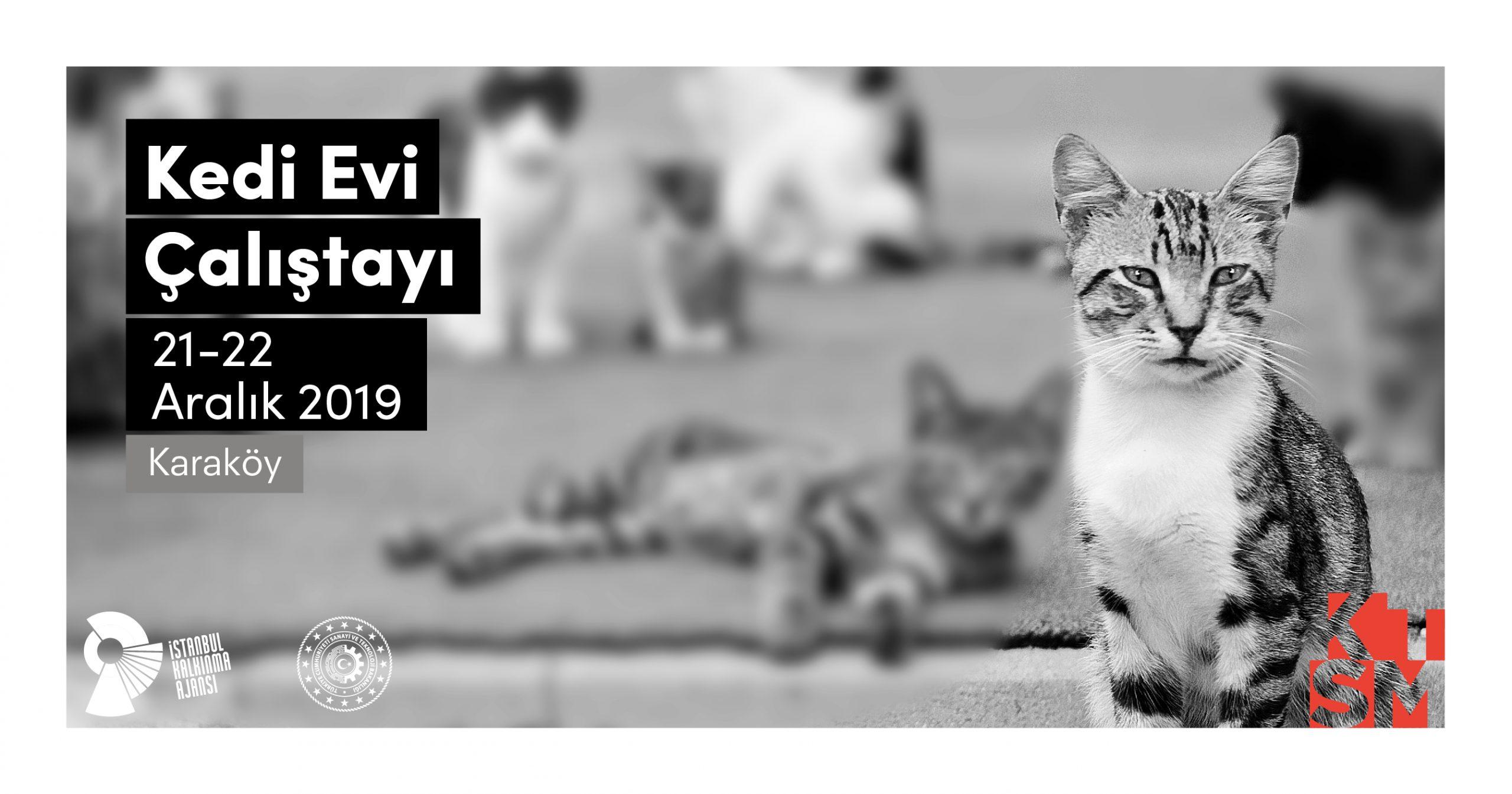 Sosyal Fayda için Tasarım: Kedi Evi Çalıştayı