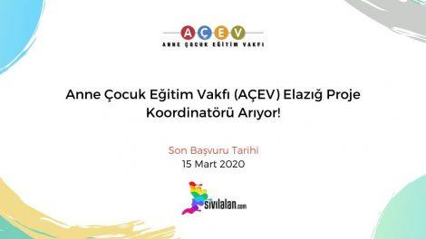 Anne Çocuk Eğitim Vakfı (AÇEV) Elazığ Proje Koordinatörü Arıyor!