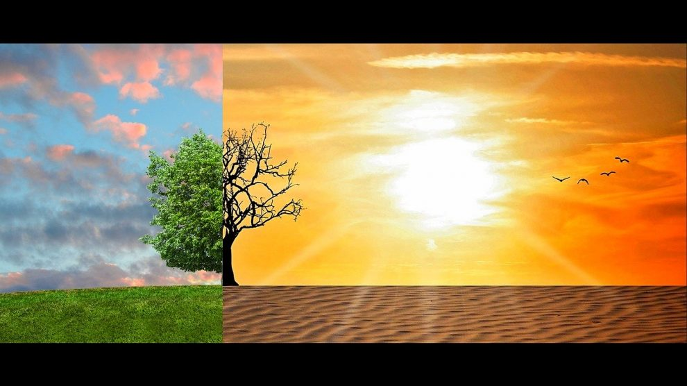 Arçelik İklim Krizi ile Mücadelede En İyi Şirketler Arasında