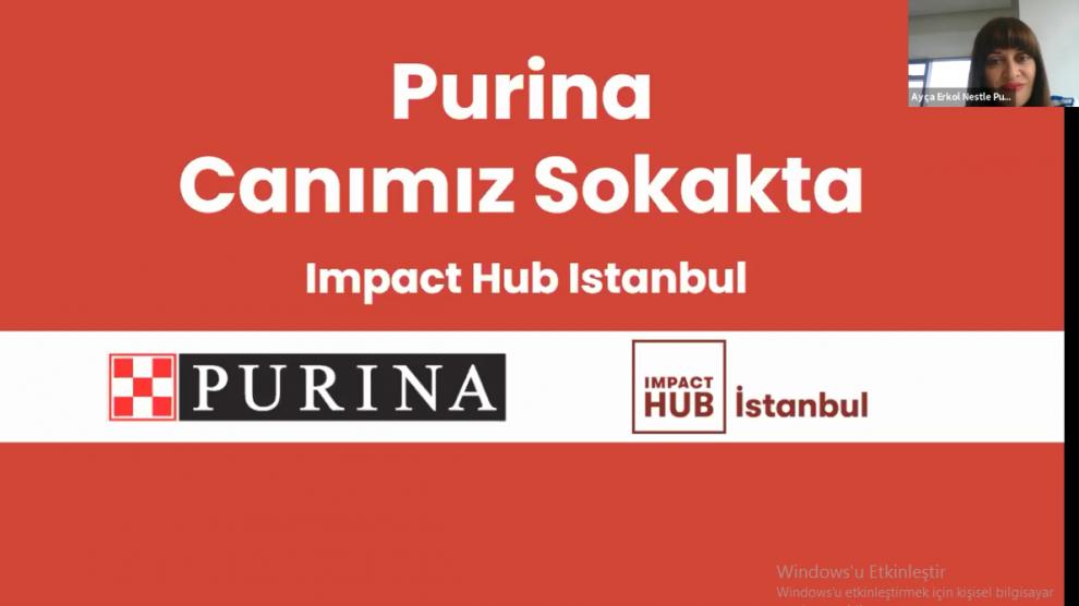 Nestlé Purina PetCare Canımız Sokakta Bootcamp fikir maratonunda yaratıcı fikirler birbiriyle yarıştı