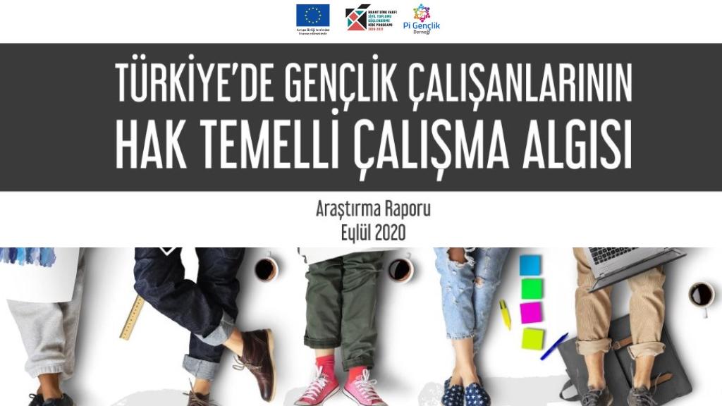 Türkiye'de Gençlik Çalışanlarının Hak Temelli Çalışma Algısı Araştırma Raporu